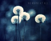 Royal Blue Dandelions Photo Wishes Child Summer Dreams - NoMarkAtAll