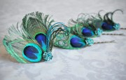 peacock feather hair accessories