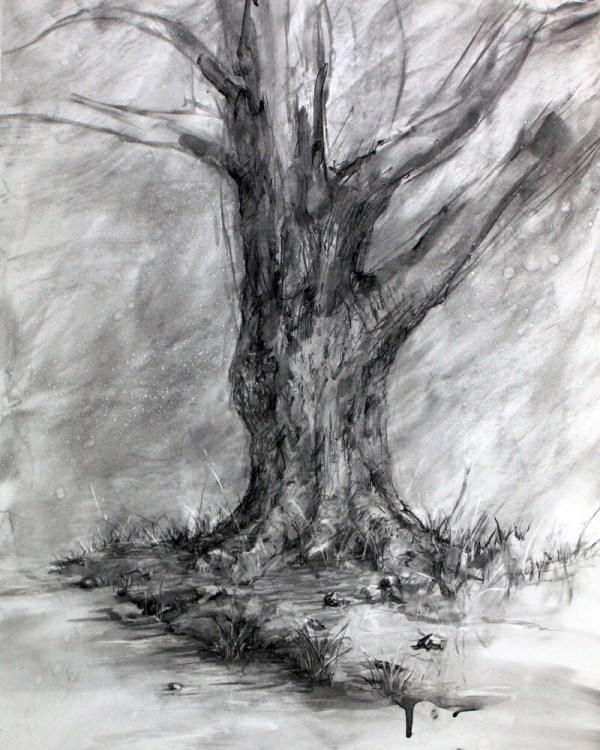 Items Similar Winter' Shadow-charcoal Tree Drawing-fine Art Landscape