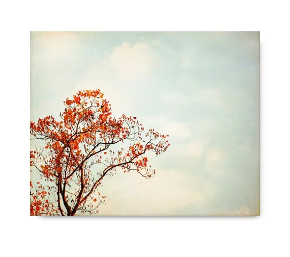 Autumn Tree Photography, orange red, landscape, branches, autumn leaves, blue sky, clouds, nature, country decor - semisweetstudios
