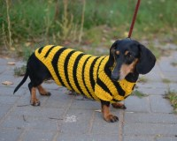 Dog sweater Dachshund Sweater Dog Clothes Bee Costume for Pets