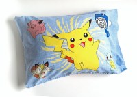 Set of Two Pokemon Pillow Cases