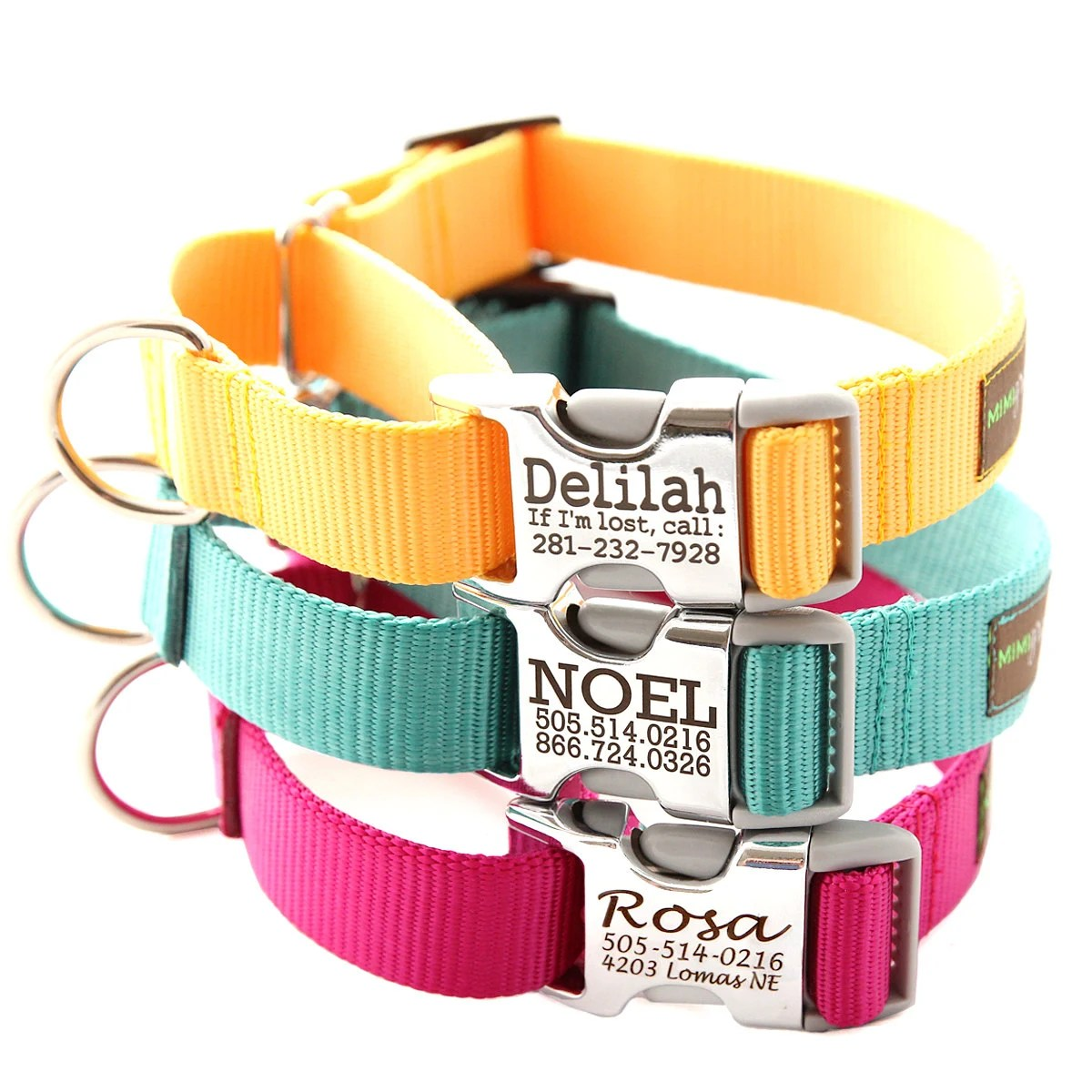 Buckle Martingale Dog Collar Personalized With 18 Webbing