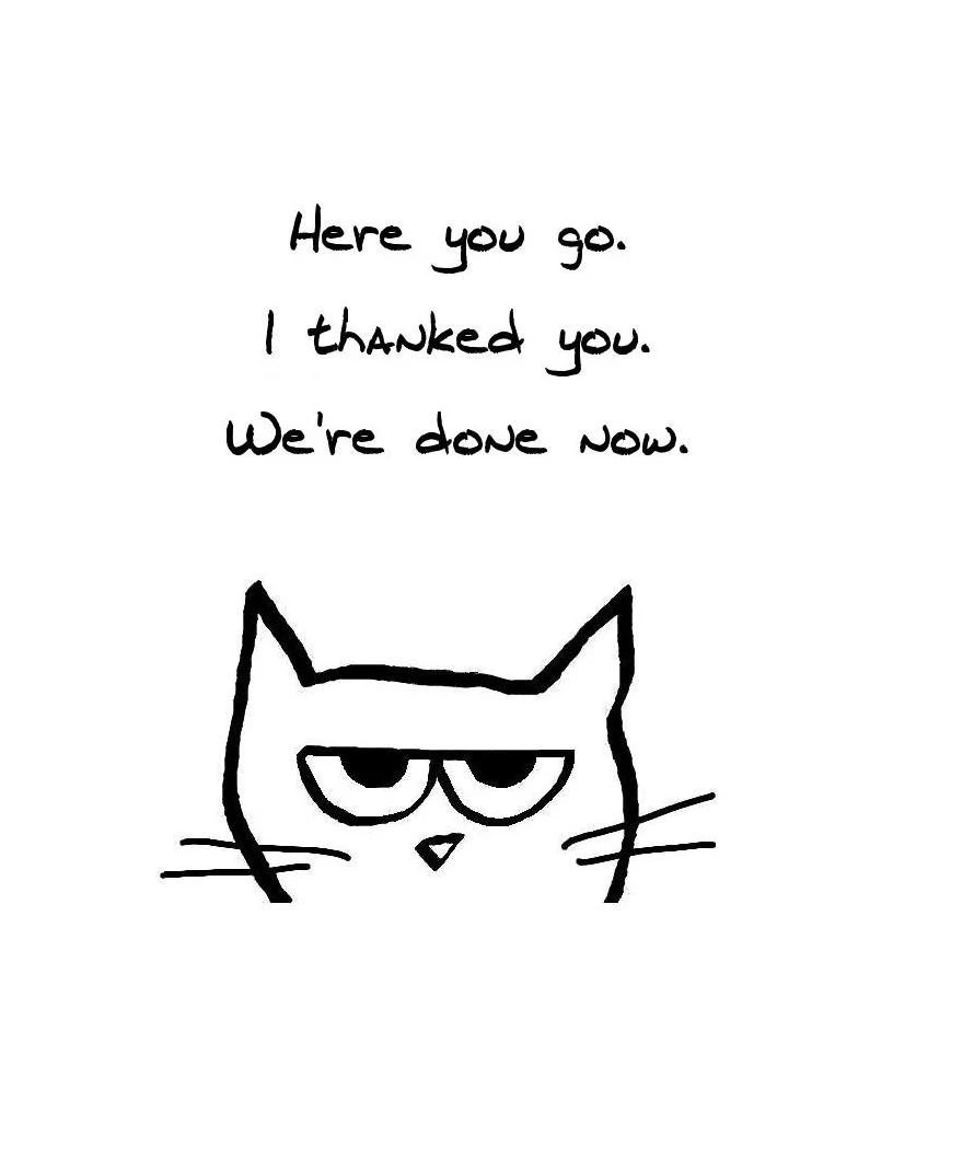 Angry Cat Begrudgingly says Thank You Funny by