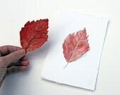 Red Leaf Original Watercolor Painting, Red Leaf Painting, Leaf Watercolor, Red Orange Leaf, Autumn Leaf Painting, Nature Study - trowelandpaintbrush