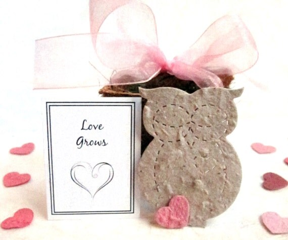 Items Similar To 20 Seed Owl Wedding Favors