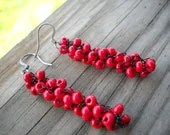 Black and Red Beaded Crochet Earrings Set Available Many Color Options Hypoallergenic - MegsCrochetJewels