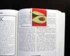 3 Bookmarks, Recipe Markers, Stocking stuffer, Party favor, Housewarming gift, Avocado, Bright Red, Avocado Green