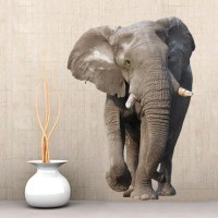 Items similar to WSD166 - Large african elephant photo ...