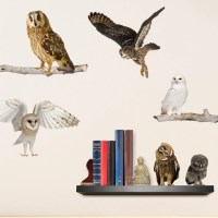 Realistic Owls Wall Decals by WallsNeedLove on Etsy