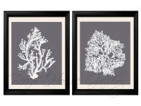 Gray Coral Wall Art Cool Grey Coral Print Grey White Wall