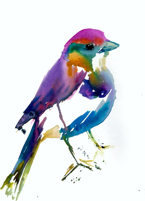 Colorful Bird Print Of Watercolor