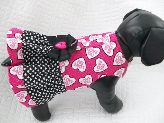 15 Fashions For Cats On Valentines Day Mousebreath