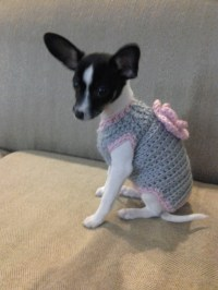 Dog Sweater Custom Made X-Small/ Small Gray and Pink Dog