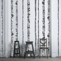 Birch Tree Wall Decals 9 ft tall Quantity of 5