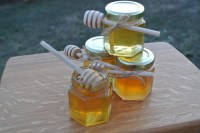 Rustic Chic Wedding Honey Favors 24 Jars Filled FRESH With