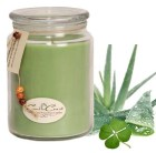 Green Clover and Aloe Scented Soy Candles,  Long Lasting 100% Natural Soy Wax  Candles