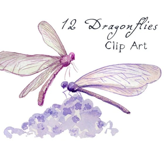 digital clip art watercolor dragonflies
