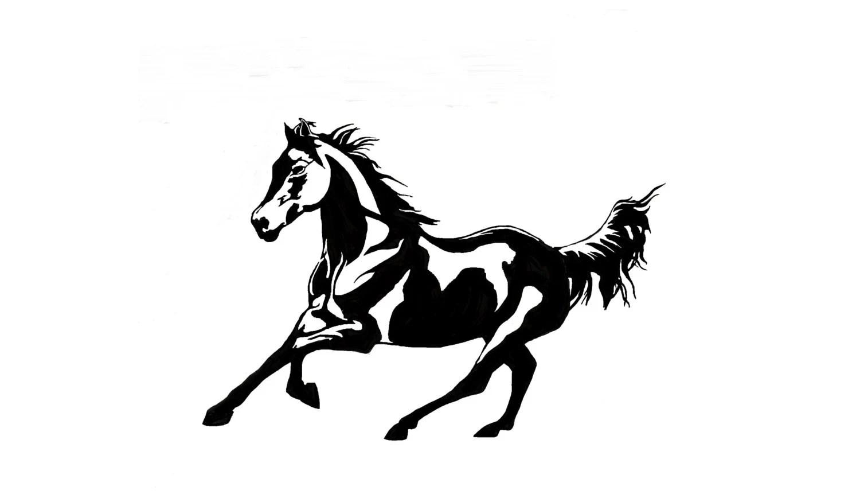 Horse Wall Decal Mustang Sticker Girls Room Decor Teen Room