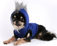 Dog clothes XXS sleevless Black and Blue Mohawk Hoodie