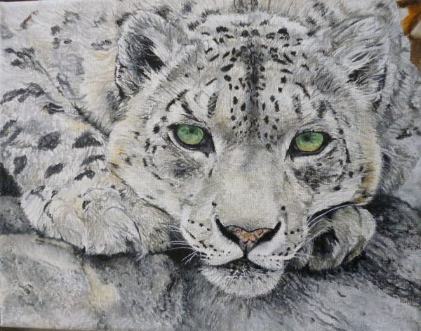 Snow Leopard Big Cat Original Oil Painting Hand Painted 8 X 10