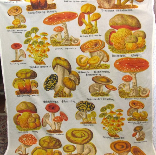 Mushrooms Screenprint Fabric Design Legacy