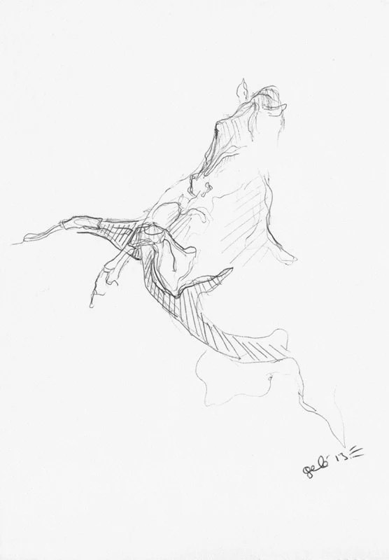 Original Sketch 208 of a Rearing Up Horse