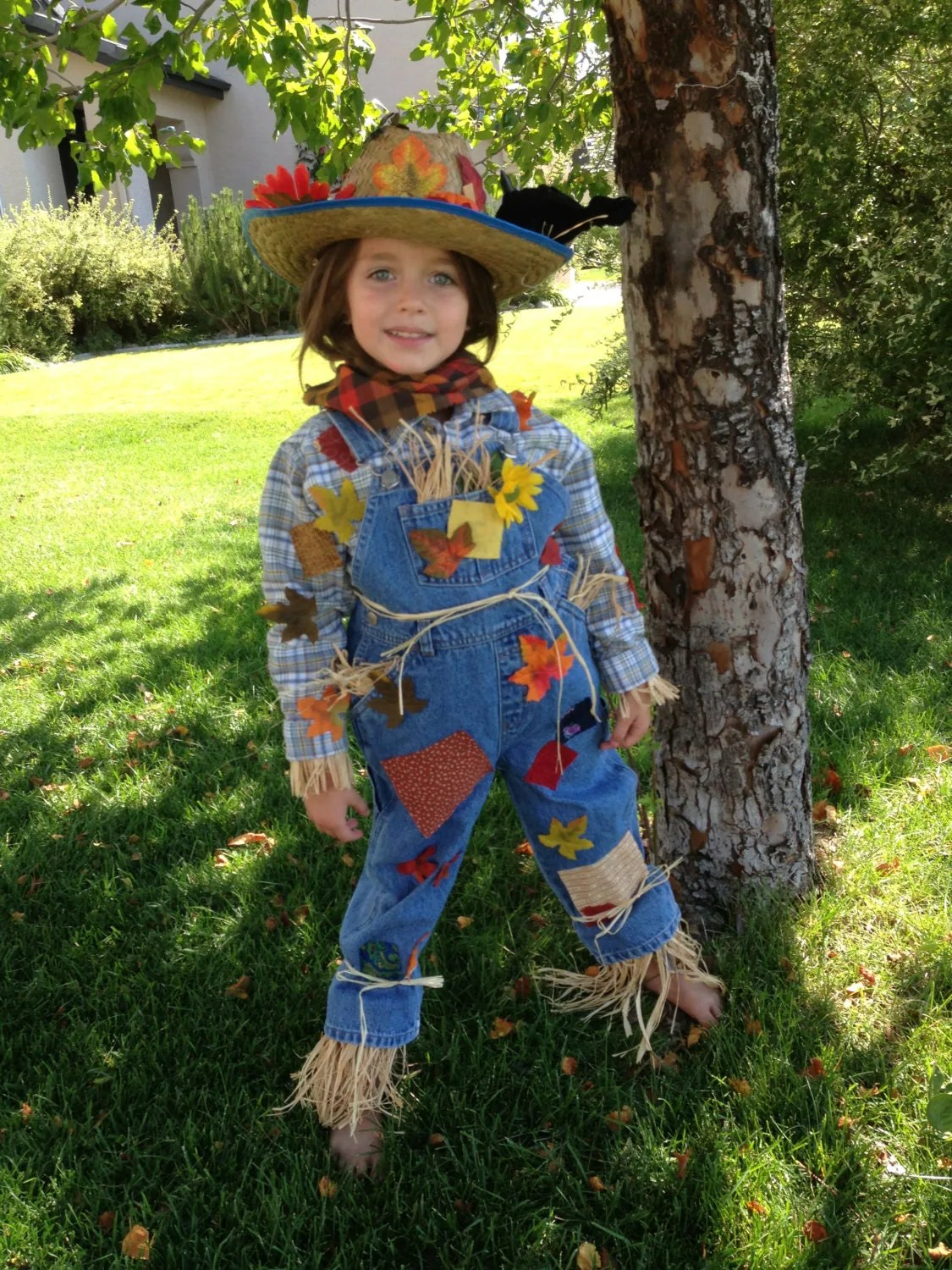 Adorable 3t Girls Or Boys Scarecrow Costume With Hat And Crow