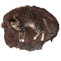 Alpaca Pet Bed Cat Mat Raw Fleece Felted Rug Brown