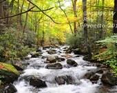 Jones River Rapids, Autum...