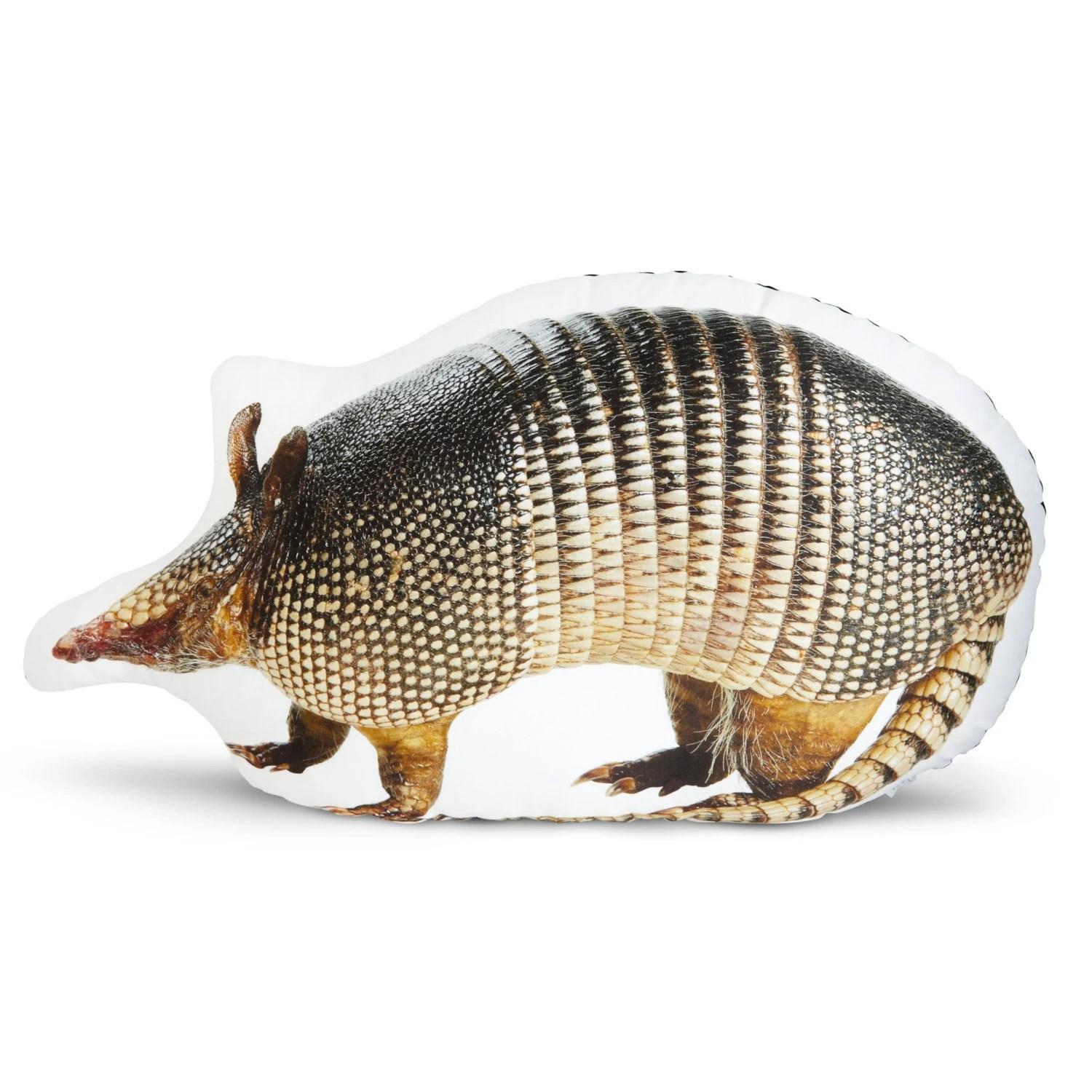 Texas Armadillo Printed Pillow
