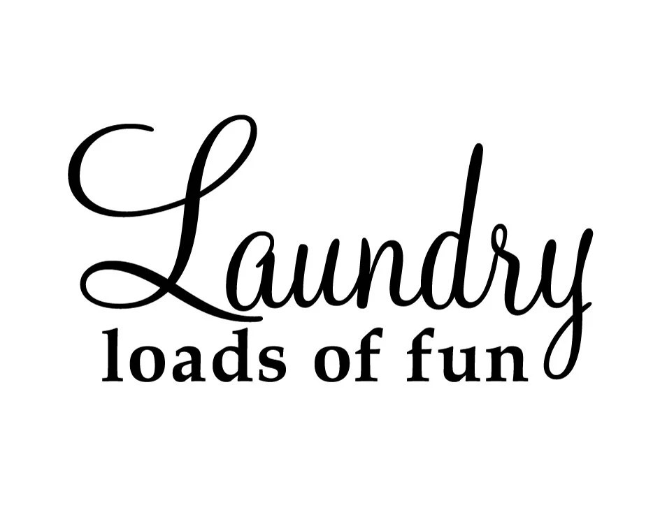 Laundry Loads of Fun Quote Saying Vinyl Decal by airetdesigns