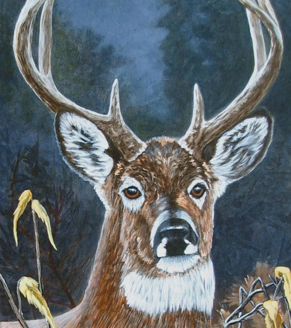 White Tailed Deer Colorful Wood Mounted Canvas Art 19