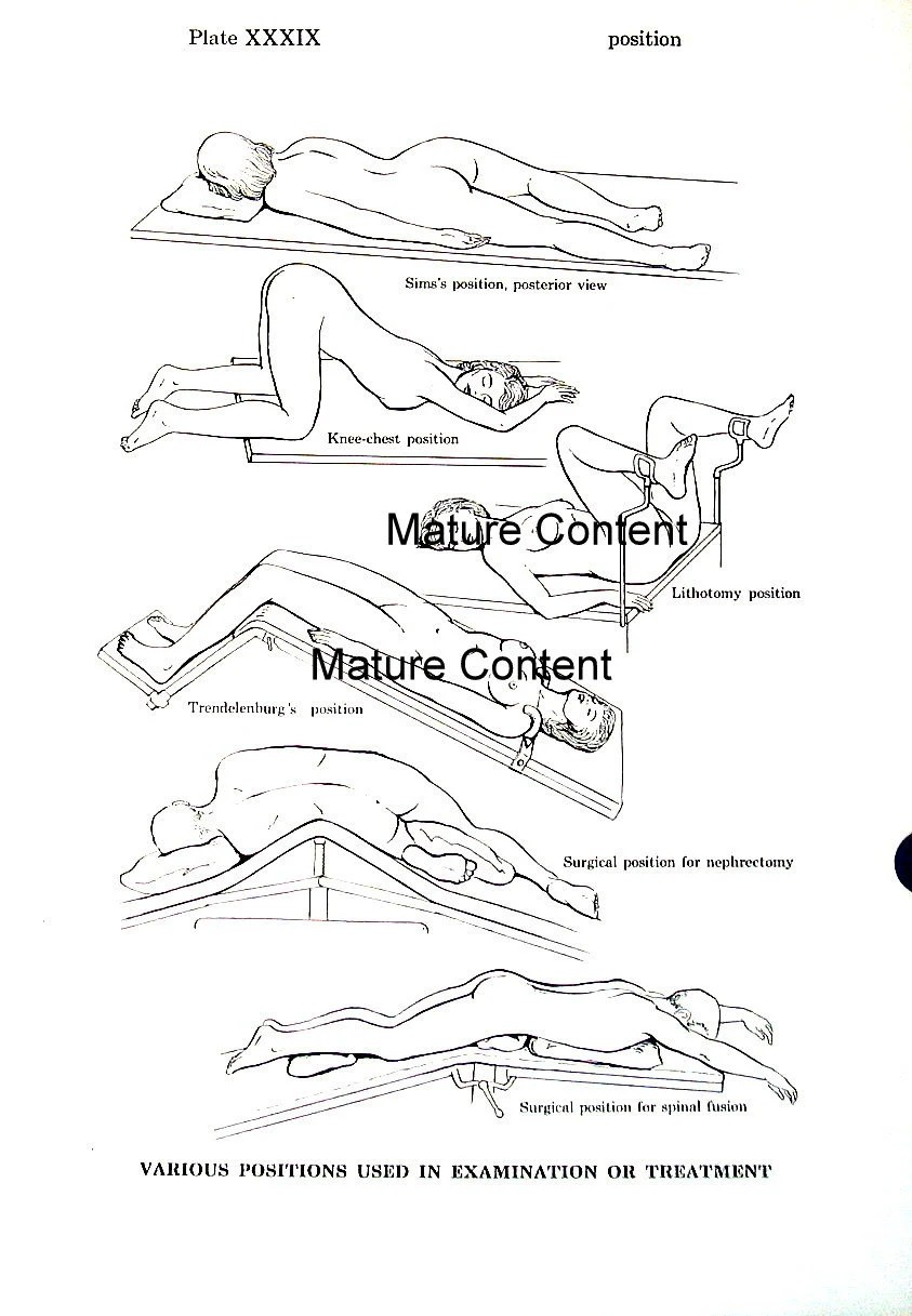 Examination Positions Various Positions Anatomy Medical