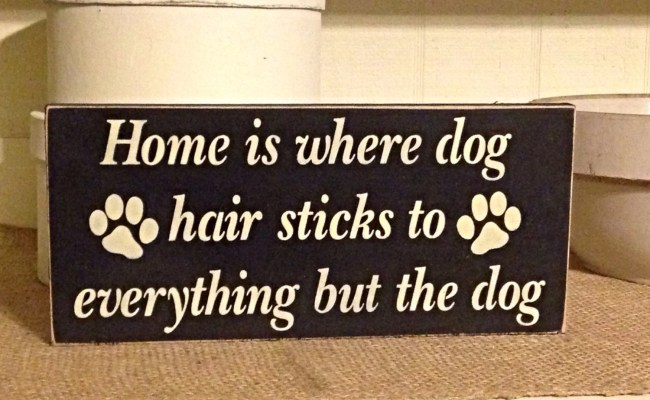 Home Is Where Dog Hair Sticks To Everything But The Dog Dog