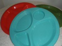 Retro Picnic Plates large plastic divided picnic plate