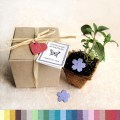 100 plantable wedding favors with biodegradable pots and flower seed