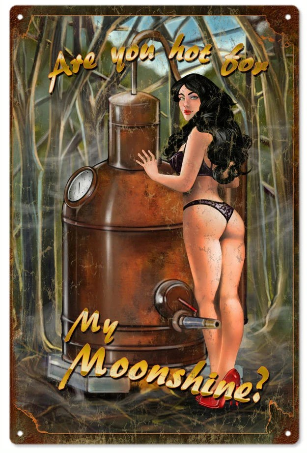 Are You Hot My Moonshine Pin Up Girl Art Aluminum Sign