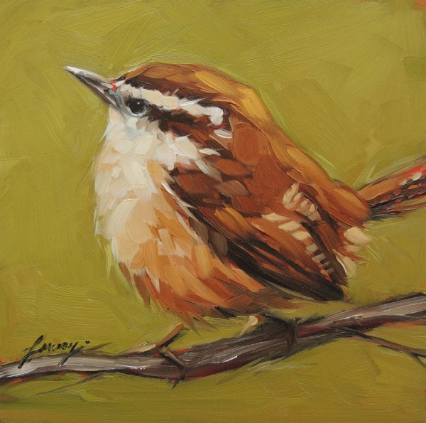 Original Oil Bird Painting Carolina Wren 6x6 Laveryart