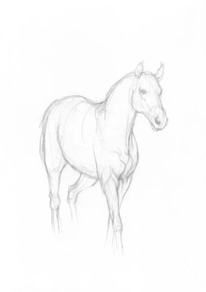 horse simple drawing pencil sketch drawings sketches painting easy horses head cool animal sketching minimalist animals draw dr odd equine