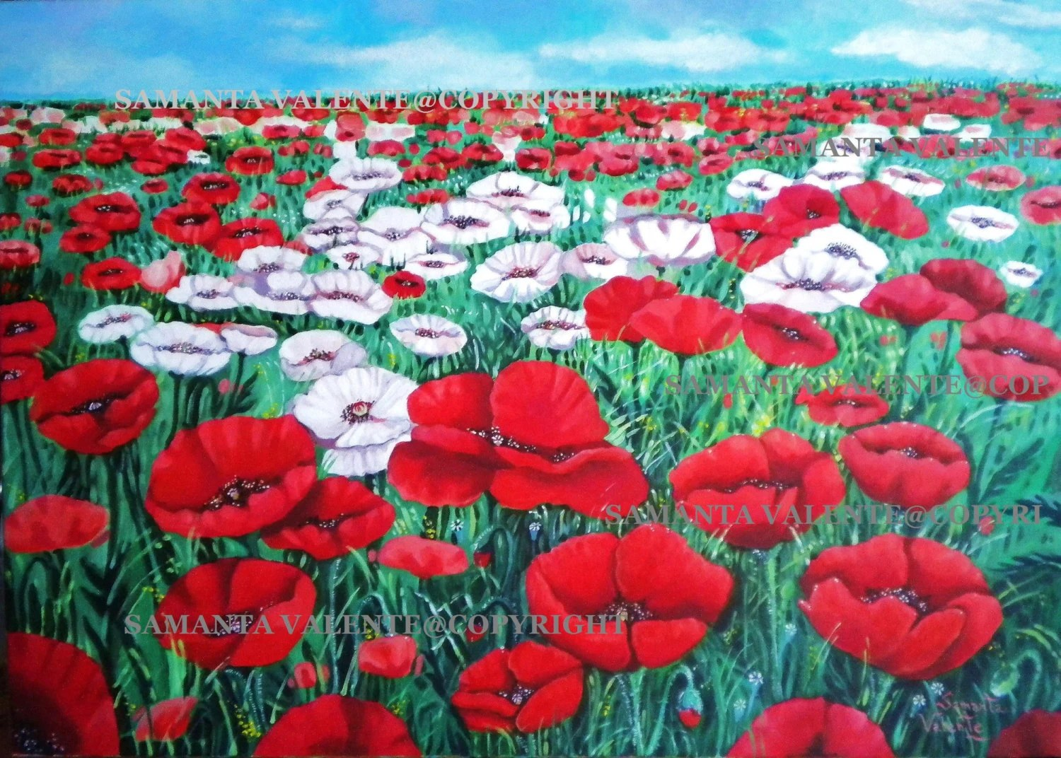 Art print, original art, poster,original painting by Samanta Valente with red poppies and white 8x11inch. - samantart