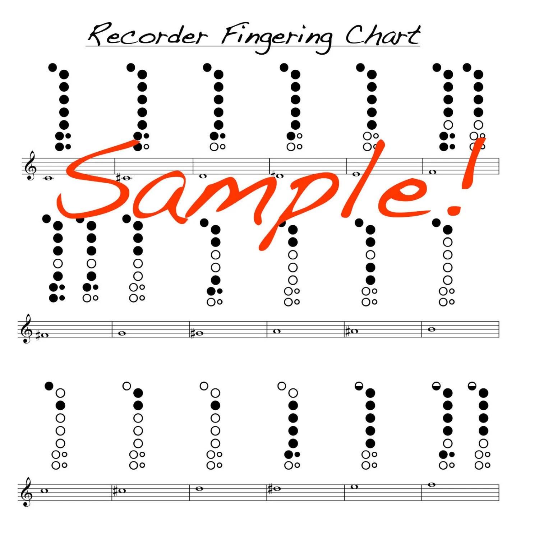 Mini Recorder Fingering Chart Double Sided Laminated chart