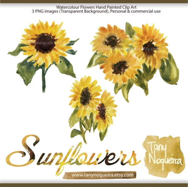 sunflower clip art watercolor