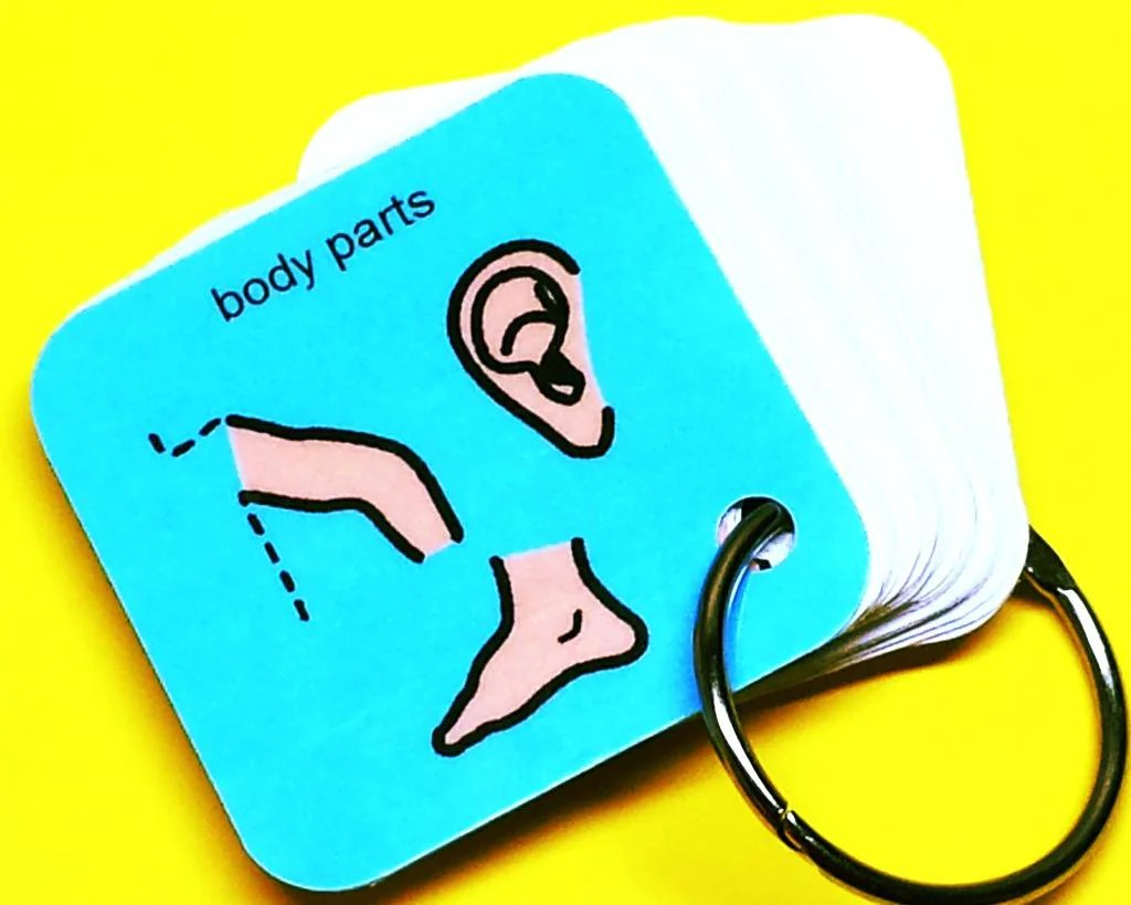 Autism Pecs My Body Parts Aba Keyring Activity By