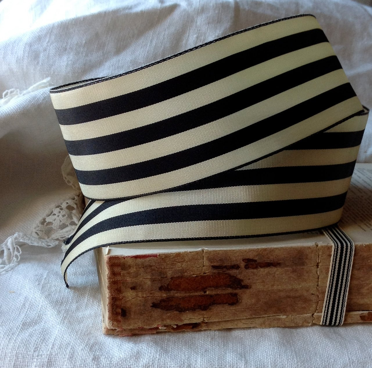 Striped Black Ebony And Cream Ribbon