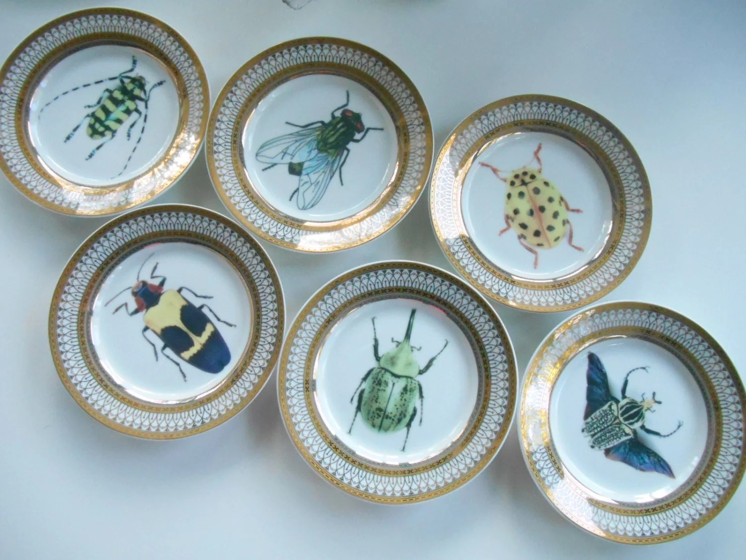 Customized Dinnerware & Common Questions About Ceramic