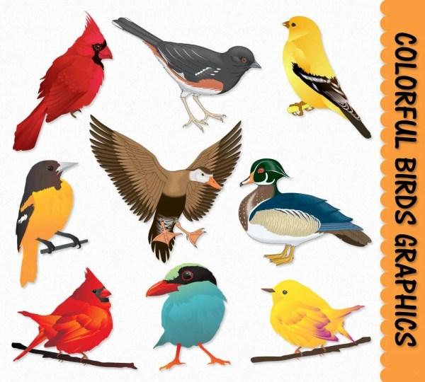 birds clip art graphics bird clipart