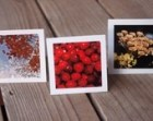 Fall Notecards, Thank You Notes, 3x3 Notecards, Blank Cards, Thanksgiving Cards
