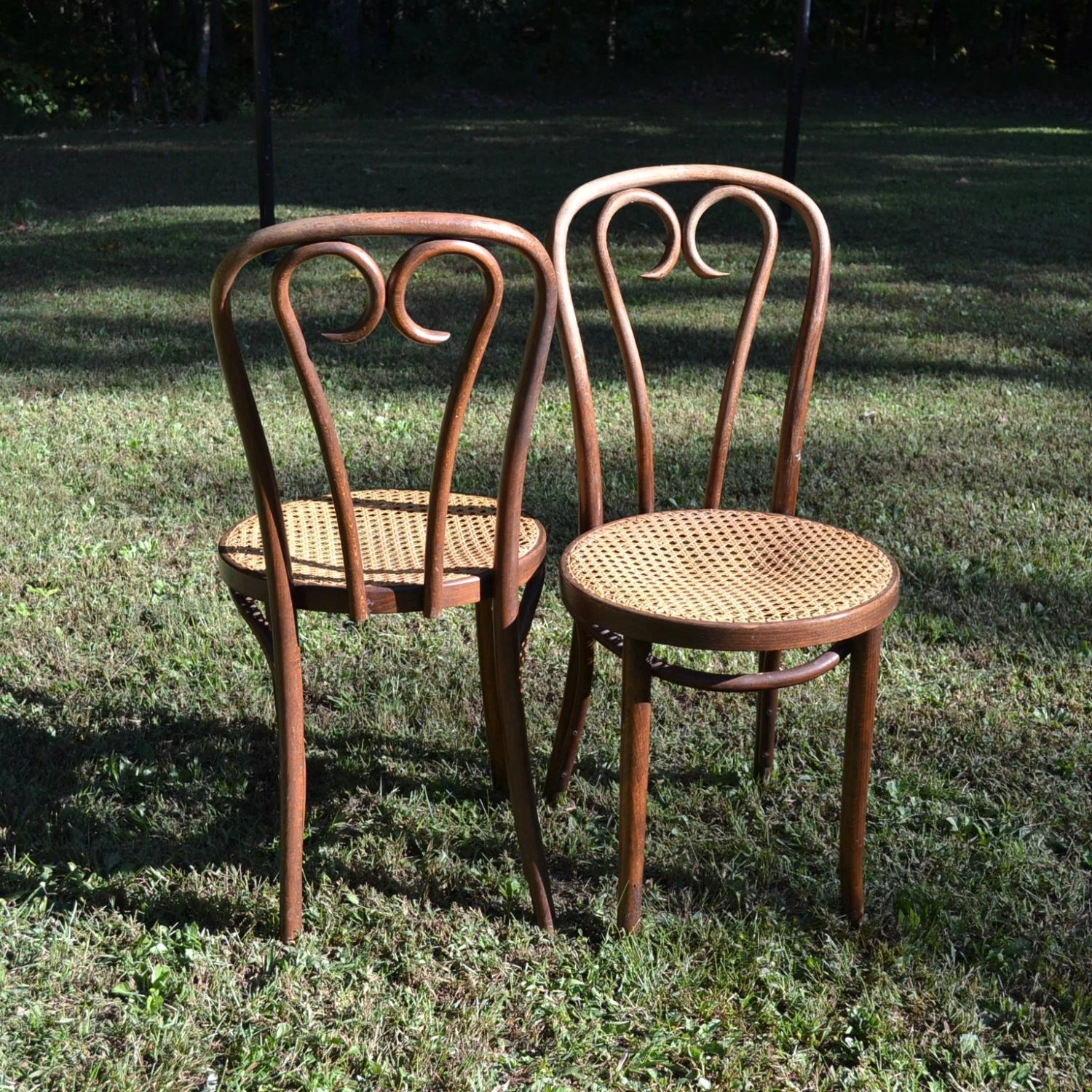 french bentwood cafe chairs chair covers and bows for wedding vintage thonet style bistro cane seat original