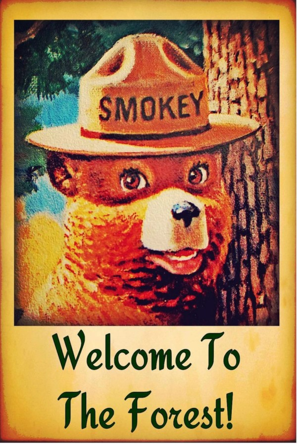 Smokey Bear Poster 24 X 36 Forest